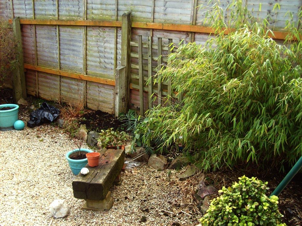 Second Day Gardening