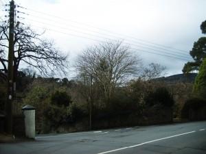 Delgany Y- junction, Co.Wicklow, Ireland