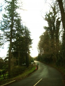 Priory road in Delgany, Co.Wicklow, Ireland going up to Eden Gate